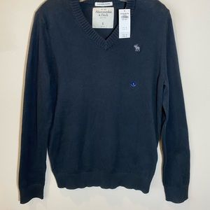 NEW Abercrombie Cashmere V-neck Sweater